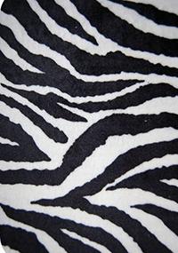 PIL-Zebra BODY